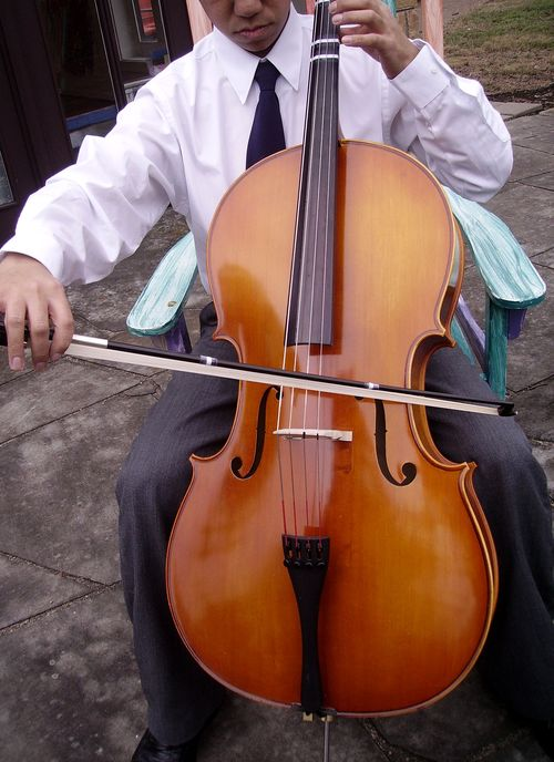 Gordo_cello_3