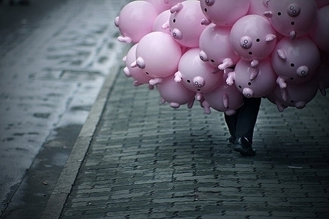 Pig_balloons