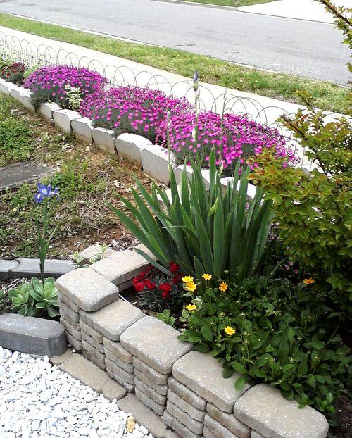 Garden_may_8_2011_4